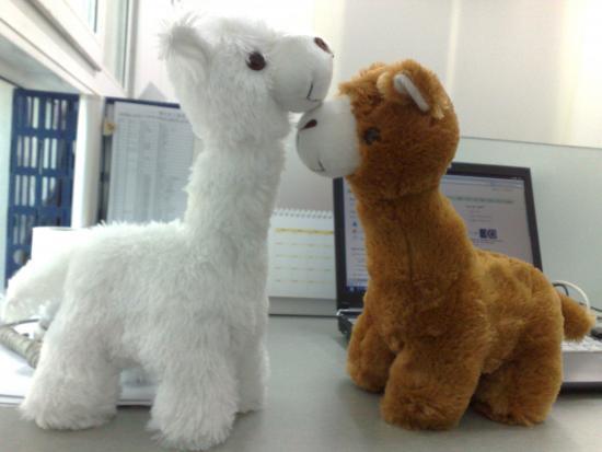 "A pair of stuffed grass-mud horses (photo: <a href=""http://flic.kr/p/65jCtL""> 叶宁</a>)"
