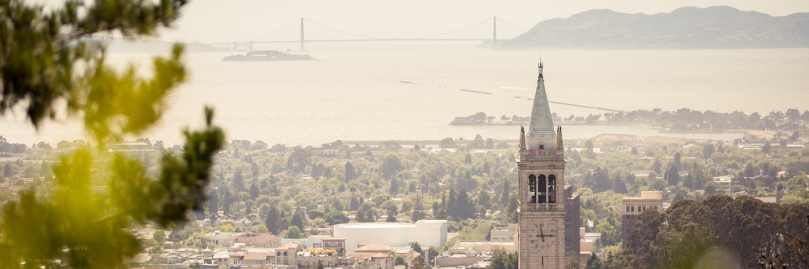 View of bay and campus, campanile