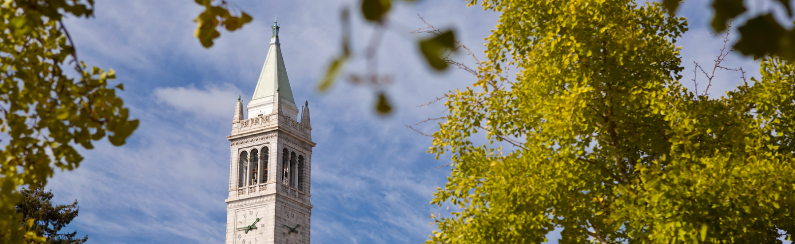 campanile and leaves