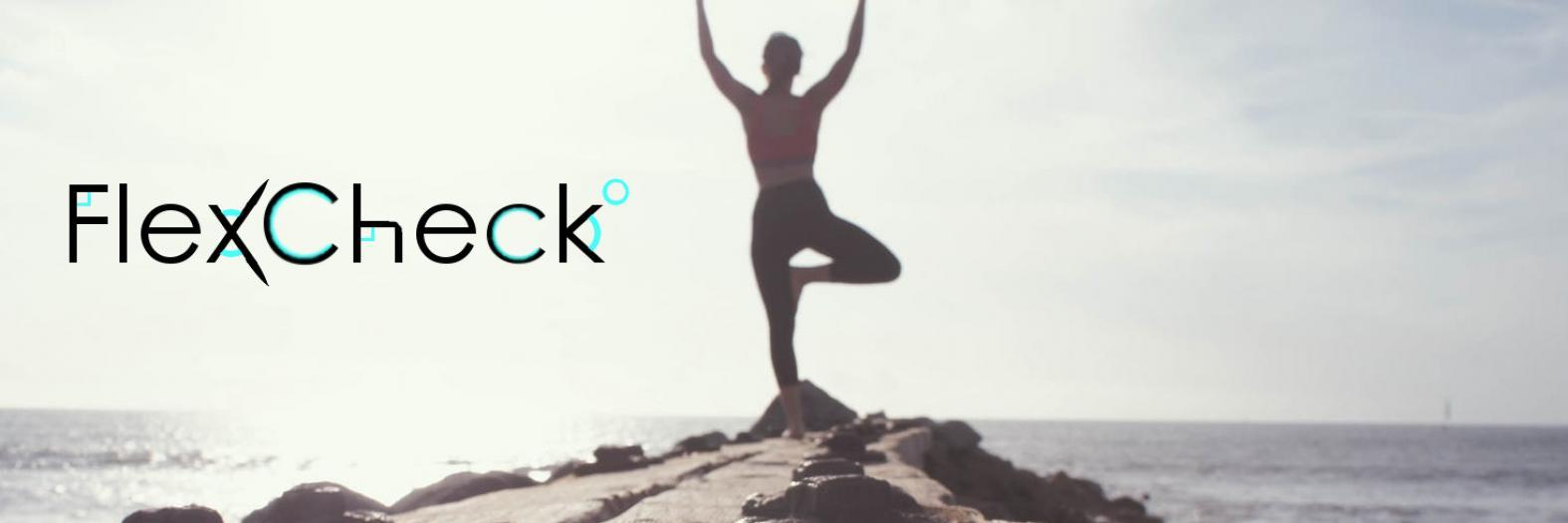 FlexCheck Banner