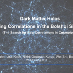Dark Matter Halos: Analyzing Correlations in the Bolshoi Simulations
