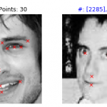 facial_keypoints_30_8.png