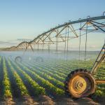 irrigation_0.jpg