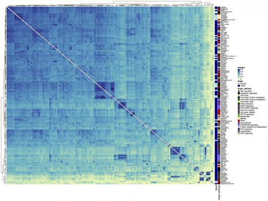 blue and green heatmap data visualization