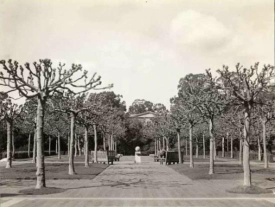 historical image of campus