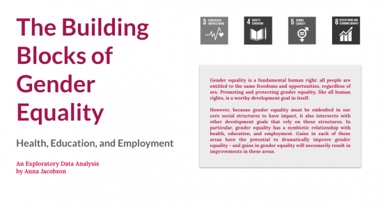 "Anna Jacobson's data visualization ""The Building Blocks of Gender Equality"""
