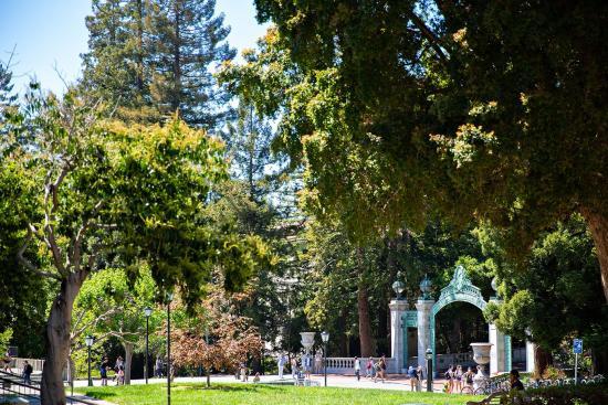 people on UC Berkeley campus