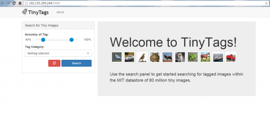 TinyTags Landing Page