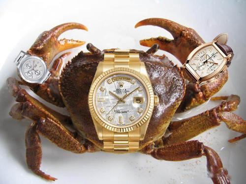 A river crab wears three watches.