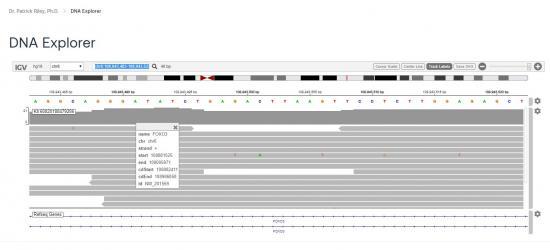 Odin DNA Explorer for Data Loss Identification