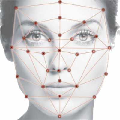 Facial Keypoints Detection: An Effort to Top the Kaggle Leaderboard